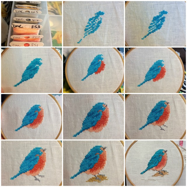 Bluebird Progress