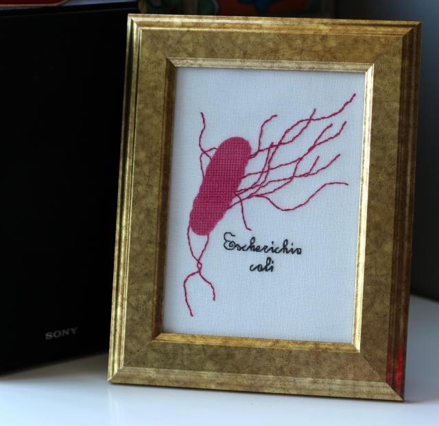 E. coli Cross Stitch
