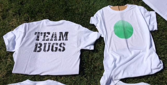 Team Bugs